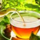 Green tea really is a superfood extraordinaire!